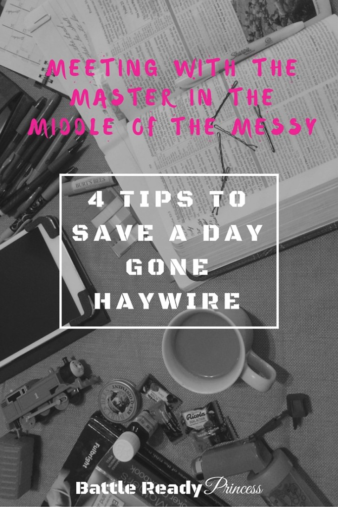There are many good reasons to start our day in prayer and Bible study, but sometimes despite our best intentions, and efforts, it just doesn't happen. So what do we so on those days? Here are a few things that I've found that make the difference between a day gone haywire, and joyful living.